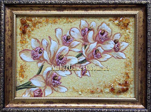 Орхидеи (102)